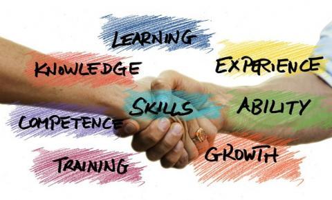 Como fazer para gerenciar múltiplas equipes dentro da indústria?