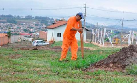 Prefeitura e Sicredi vão plantar 340 mudas no Dia da Árvore