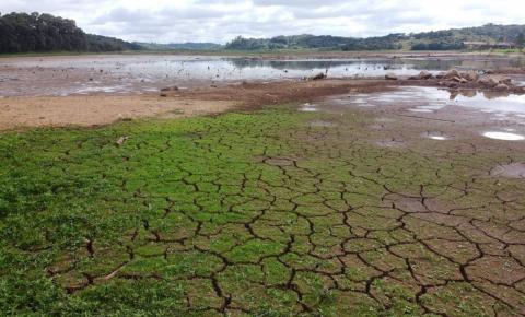 Paraná sofre com estiagem mais severa dos últimos anos