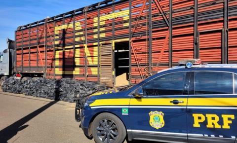 PRF apreende caminhão boiadeiro com 3 toneladas de maconha no Paraná