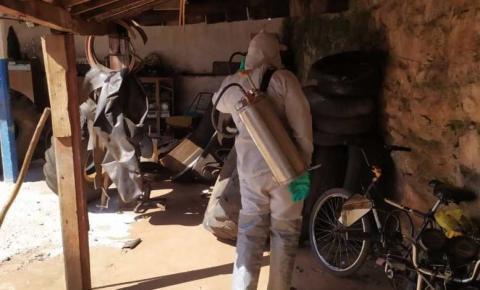 Norte Pioneiro tem redução de 96% nos casos de dengue