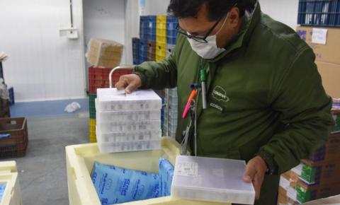 Lote com 114 mil vacinas contra a Covid-19 chega ao PR; distribuição começa na quinta